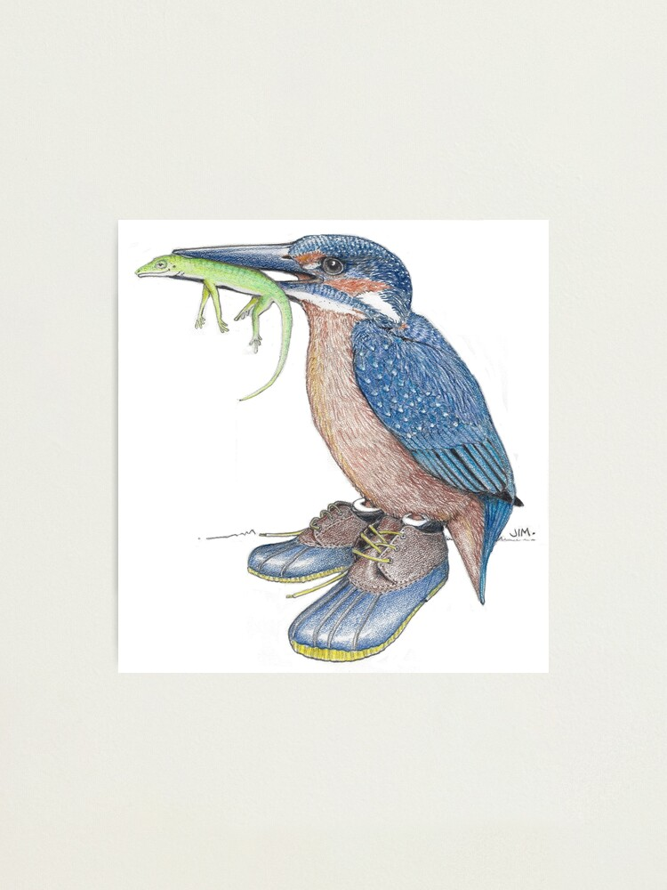 Alternate view of Kingfisher in duck shoes Photographic Print