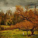 Autumn by KBritt