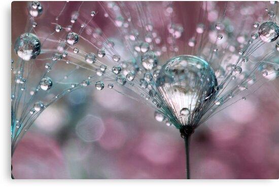 Raspberry Sparkles by Sharon Johnstone
