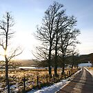 Winter Sun - Strathdearn, Cairngorm & Monadhliath by ScotLandscapes