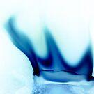 the blue flame by Rishi Kant Joshi