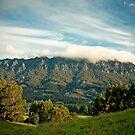 Mount Roland by Madeleine  Biancon