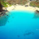 Kohala Coast  by PJS15204
