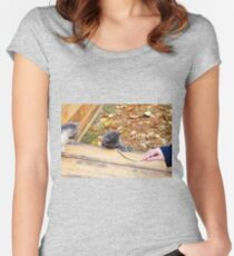 Two pretty little kitten played with a stick in the autumn park Women's Fitted Scoop T-Shirt