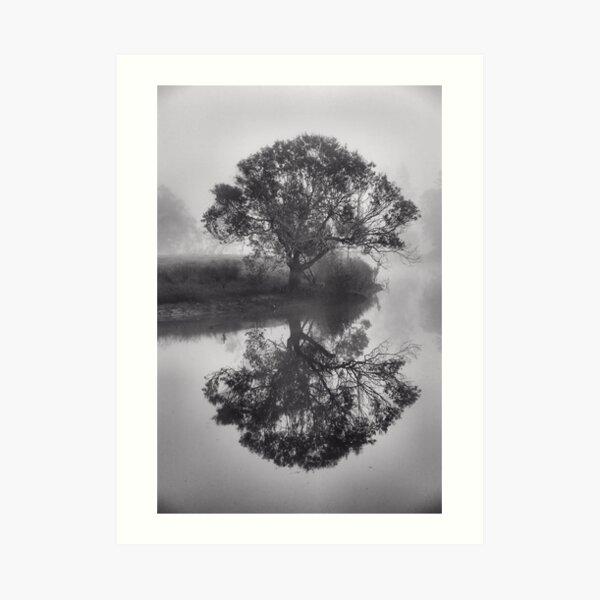 Moody - Bedlam Creek NSW Australia Art Print