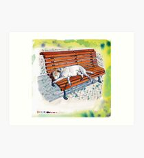 dog on bench Art Print