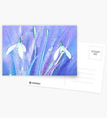 Icy snowdrops Postcards