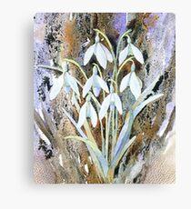 Snowdrops and bark Canvas Print