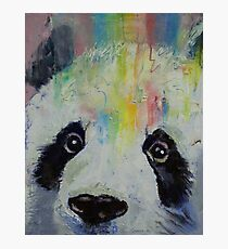 Panda Rainbow Photographic Print