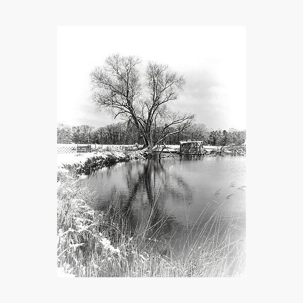 Winter Lake Silver Photographic Print