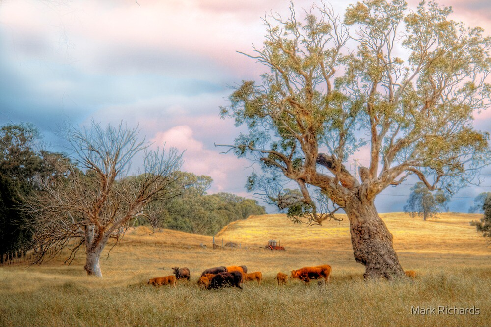 General Meeting - Mount Torrens, South Australia by Mark Richards