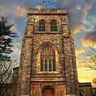 Sunset Gothic by Jessica Jenney