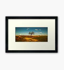 Sparse Tree - Parkes, NSW Framed Print