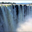 Vic Falls in all is glory! by Greg Parfitt