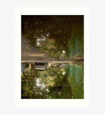 UpsideDown - Amos Art Print