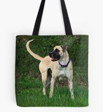 The Handsome Prince Tote Bag