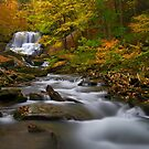 Lower Decew Falls by (Tallow) Dave  Van de Laar