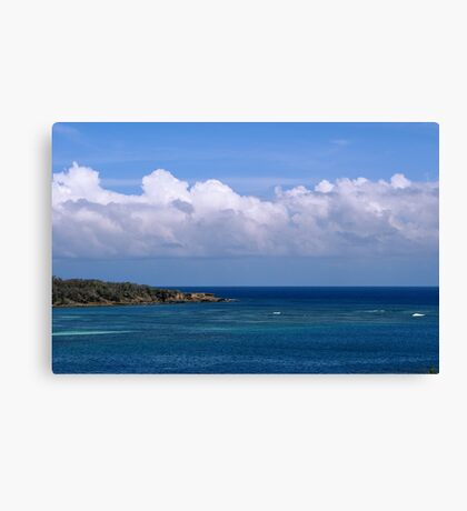 Crossing the Blue Canvas Print