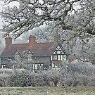Bleak House by almaalice