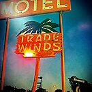 The Tradewinds Motel by deepbluwater