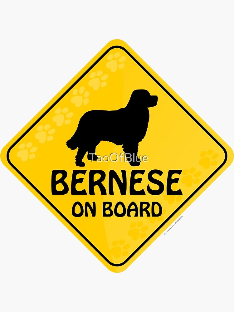 Bernese On Board by TaoOfBlue