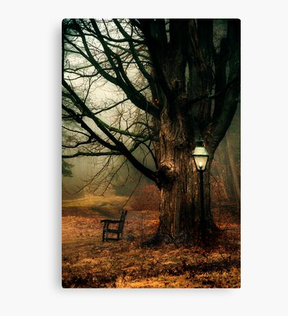 A Resting Place Canvas Print