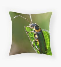 Soldier Beetle. Throw Pillow