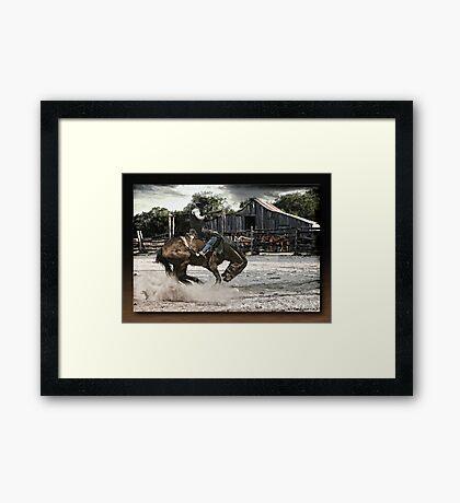 The Bronco Framed Print
