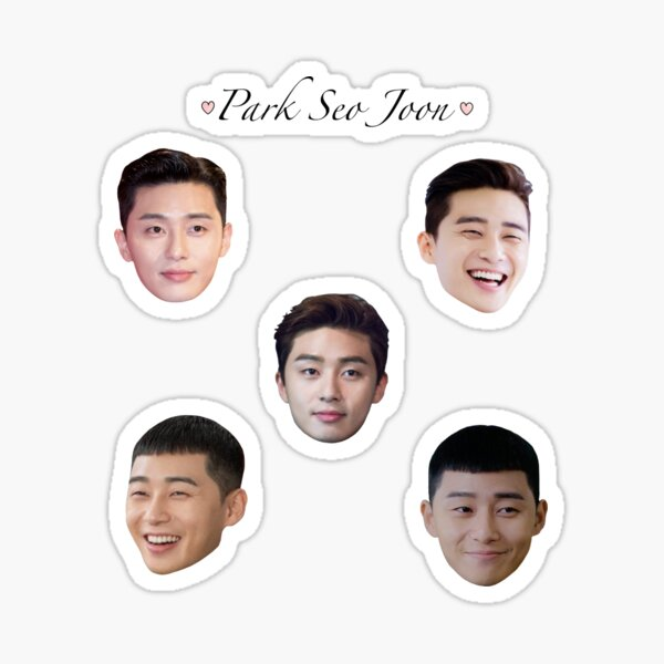 Pack d'autocollants Park Seo Joon Sticker