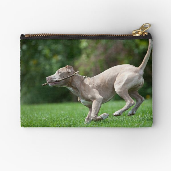 Fetch with Phoenix Zipper Pouch