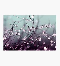 Beautiful wishes. Photographic Print
