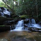 Somersby Falls by Ryan Conyers