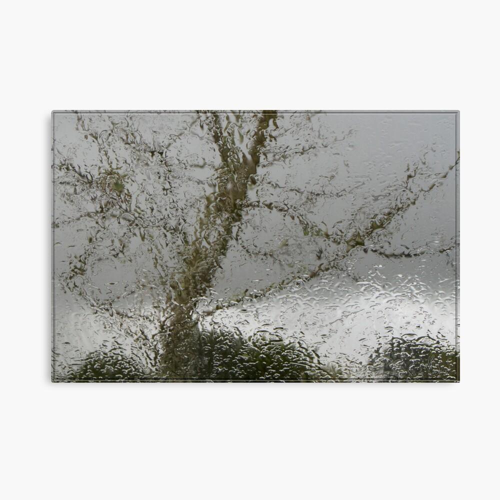 Gray Days Canvas Print