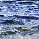 Wind & Water by Lynn Wiles