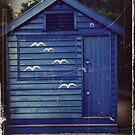 Birds Hut by oddoutlet