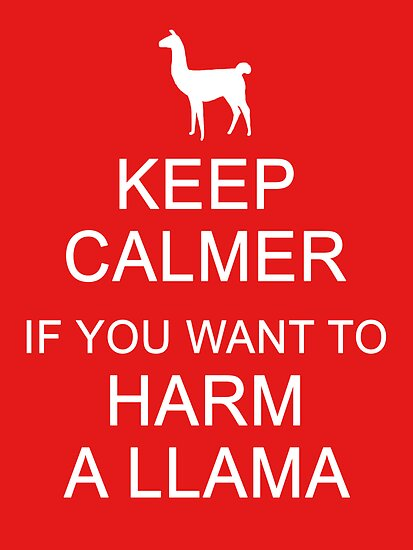 Keep Calmer if You Want to Harm a Llama (White) by meadythebrave
