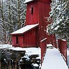 Fresh Fallen Snow by jules572
