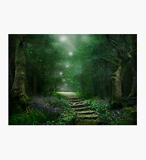 Spirit of the Woods Fotodruck