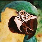 The pet parrot by Anita Wann
