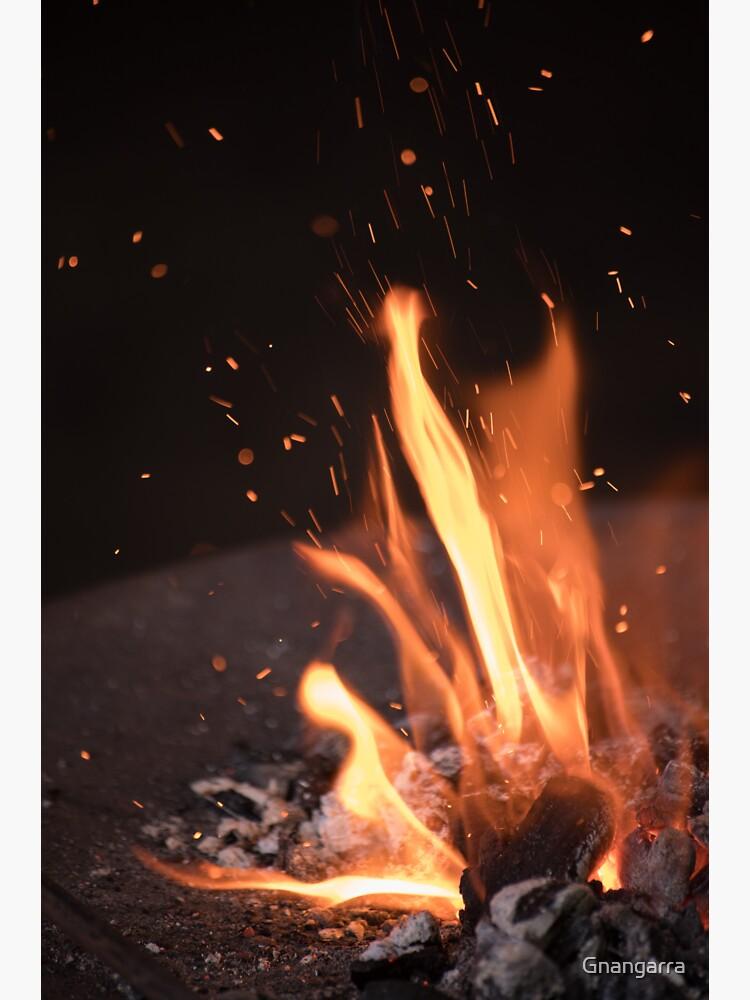 fire by Gnangarra