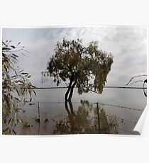Lake  Woytchugga ,via  Wilcannia  Poster