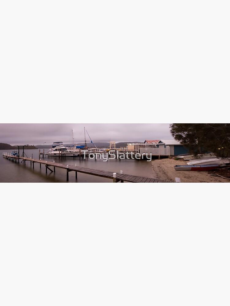Wagonga Inlet, Narooma by TonySlattery