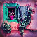 THE OLD FLOWERPOT by VIA INA