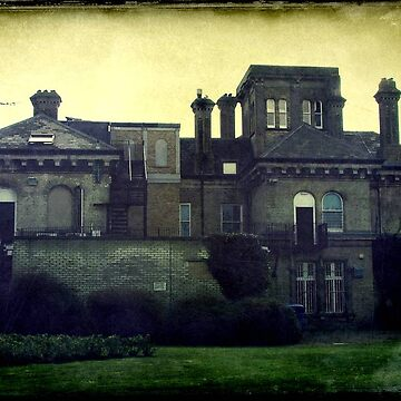 Hove Museum © by Eastsider