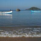 Boats Off Palolem Beach by SerenaB