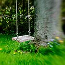 Swing on the tree by Jason Dymock Photography