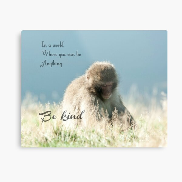In world where you can be anything be kind quote photography Metal Print