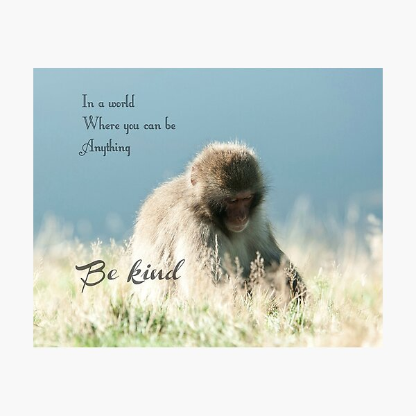 In world where you can be anything be kind quote photography Photographic Print
