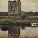 Threave Castle by Kate Fortune