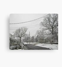 Feb. 19 2012 Snowstorm 5 Canvas Print